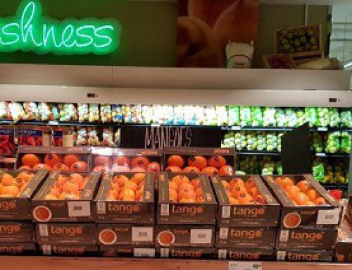 Spanish Tangos open season for South African consumers