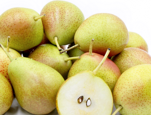 Forelle pears offer a silver lining in difficult pear season