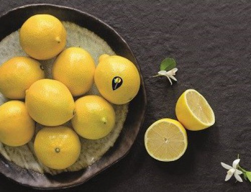 Seedless lemon brand launches in South Africa