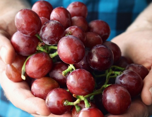 Global grape overview