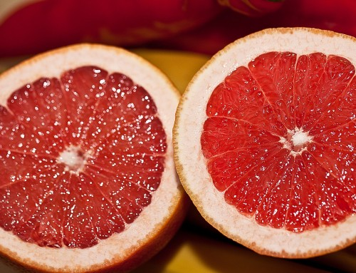 Grapefruit exports running at a jog