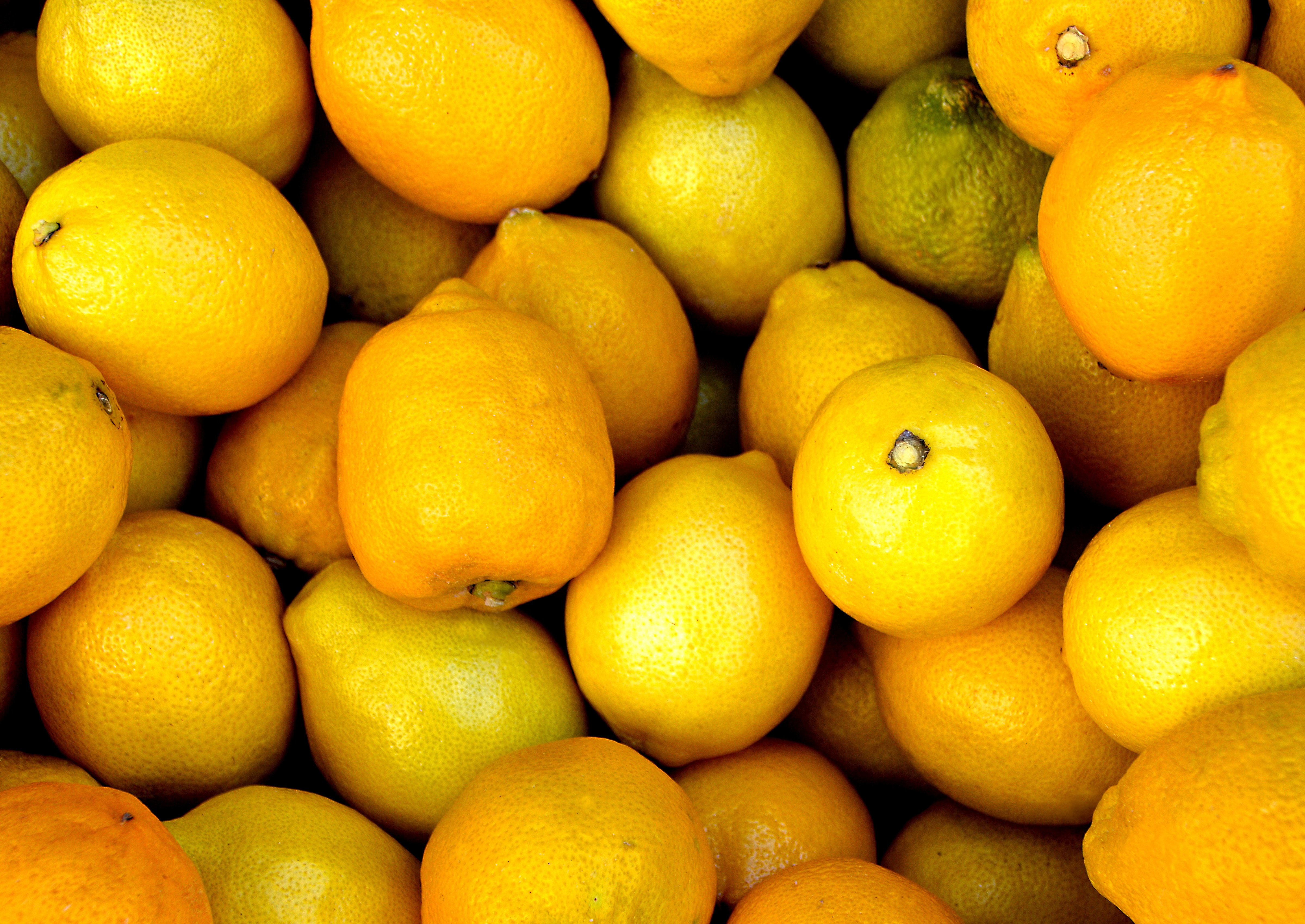 """""""Southern African citrus reached record production volume in 2018"""""""