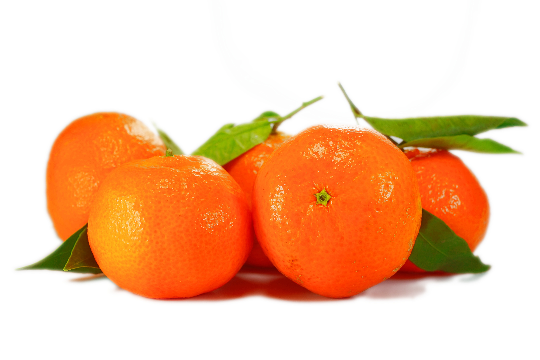 SA mandarin wrap