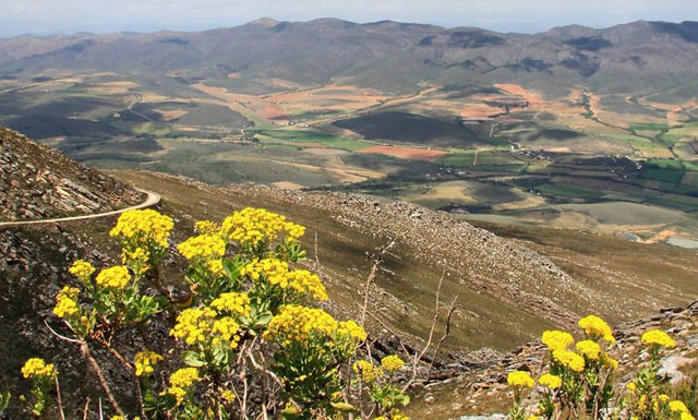 Langkloof receives its best rain in two years