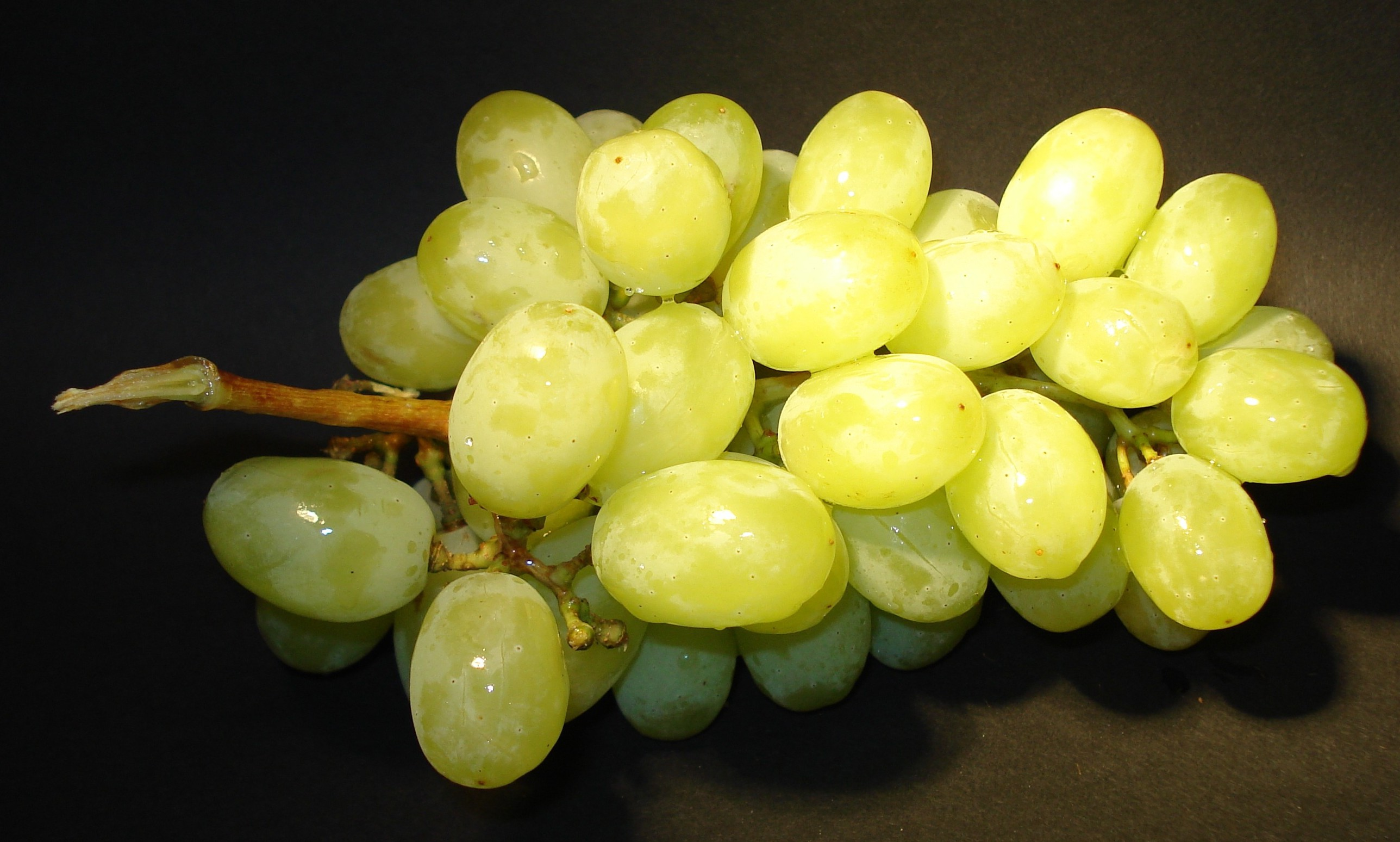 Climate has effect on southern hemisphere grapes