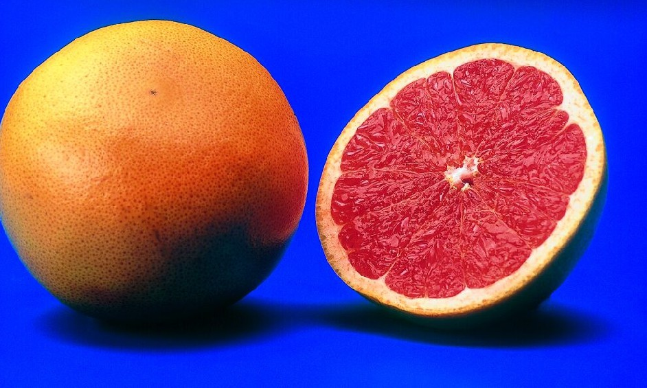 """Florida grapefruit season """"best forgotten"""""""