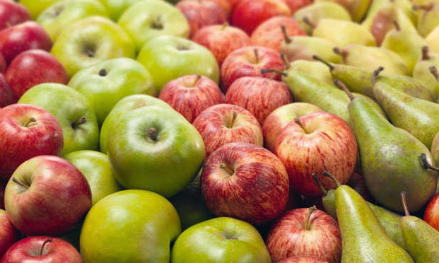Name change for deciduous fruit industry associations