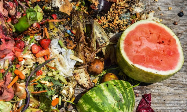 Empowering growers to combat food waste