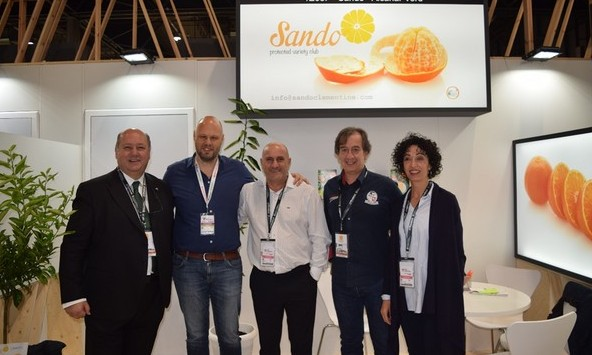 Sando expands development to South Africa