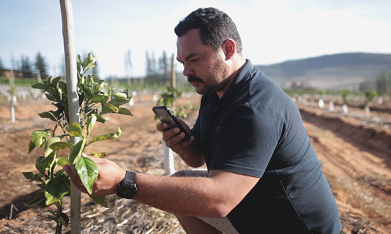 Naspers Foundry invests R100m in agritech business