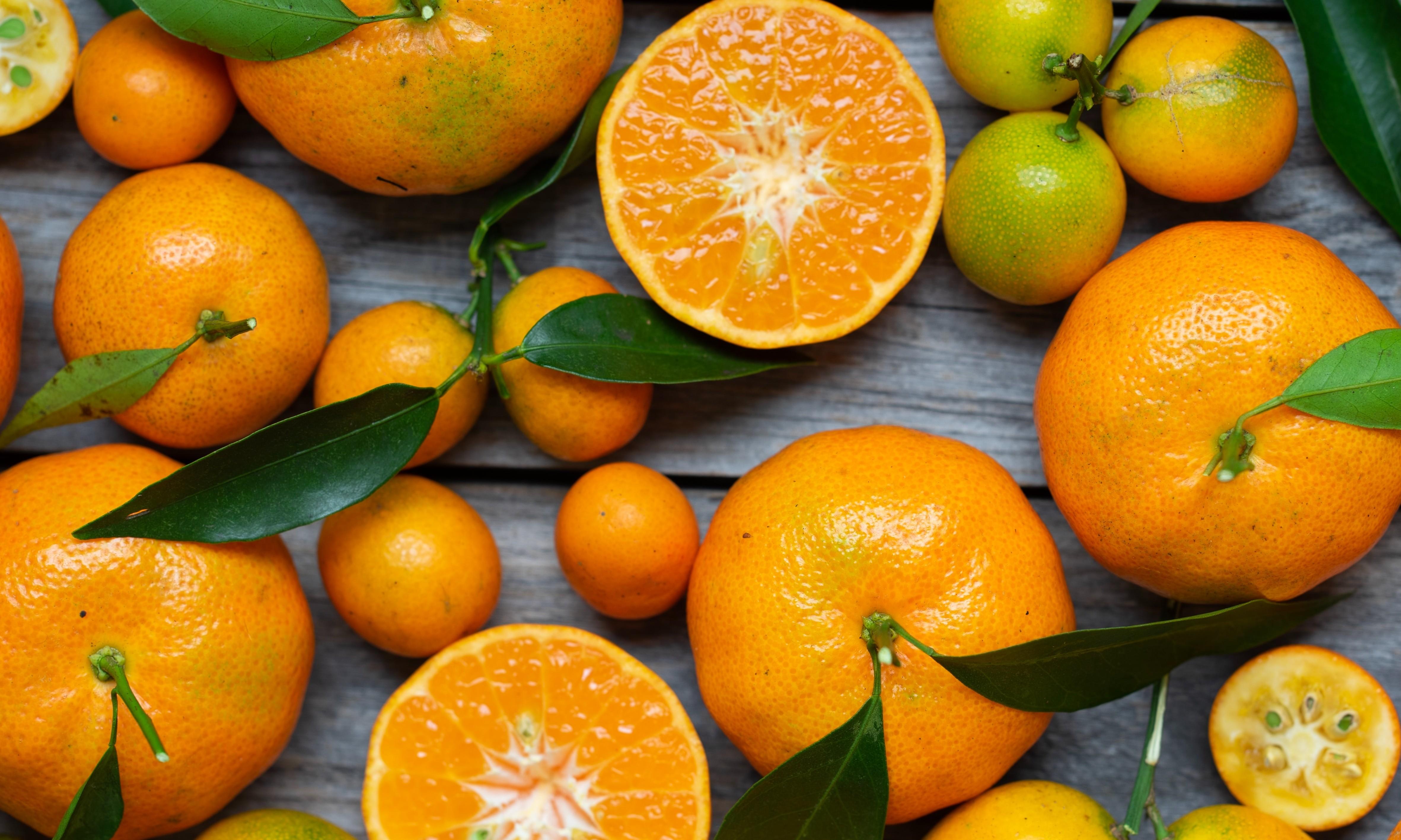 SA citrus exports latest